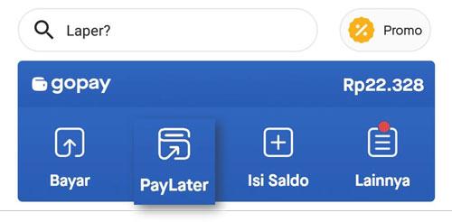Terlihatnya Menu PayLater di Halaman Utama