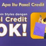 Apa Itu Paxel Credit dari Fungsi Jenis dan Cara Menggunakan